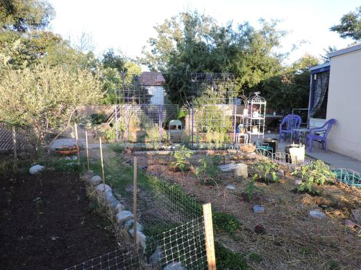 Front Yard Farmacy