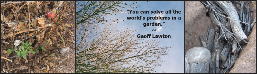 you can solve all the worlds problems in a garden